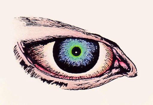 Eye Love You by goRillA-iNK