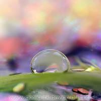 Rainbowholic by goRillA-iNK