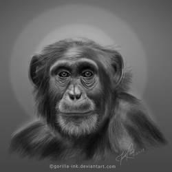Chimp by goRillA-iNK