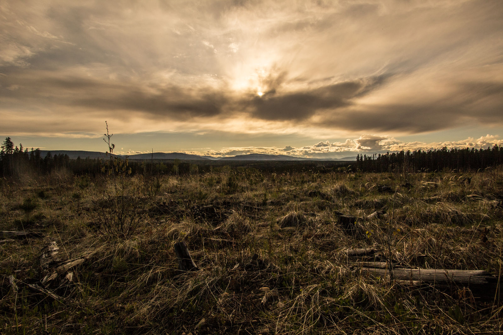 Prarie Sunset by oddmountain