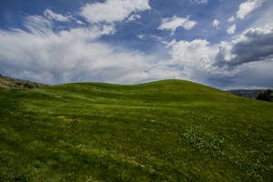 Green Hill by oddmountain