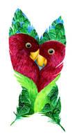 Lovebirds by Hummingbird26
