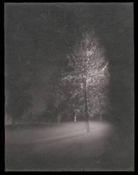 park fog by markhosmer