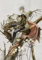 nest of the bird by mabuta