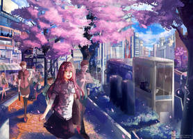 Sakura in shibuya  COM : by Innervalue by Closz