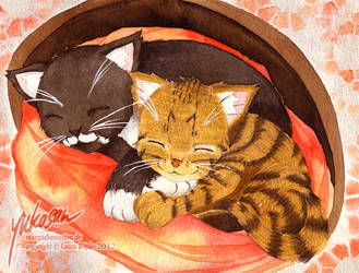 sleppy kitten by yukosan2
