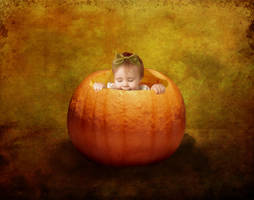 Pumpkin Eater by violscraper