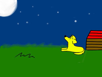 Dog Looking At The Stars by PrincessSeddie