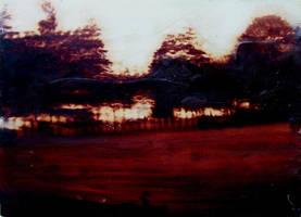 Treeline by paulrichardjames