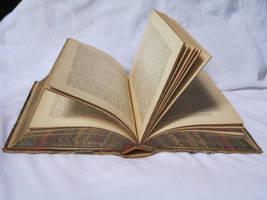 Open book stock by rustymermaid-stock