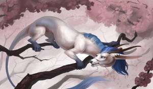 Dragon in  Sakura by Interu-Bernhard