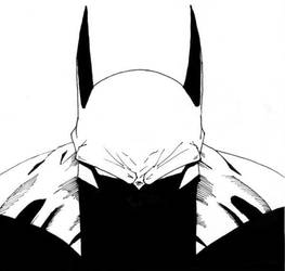 I Think You Made Batman Angry by liberate-tutemet