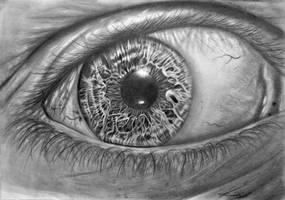 Eye by The-Kaminski