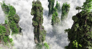 Foggy Cliffs by AronKamo