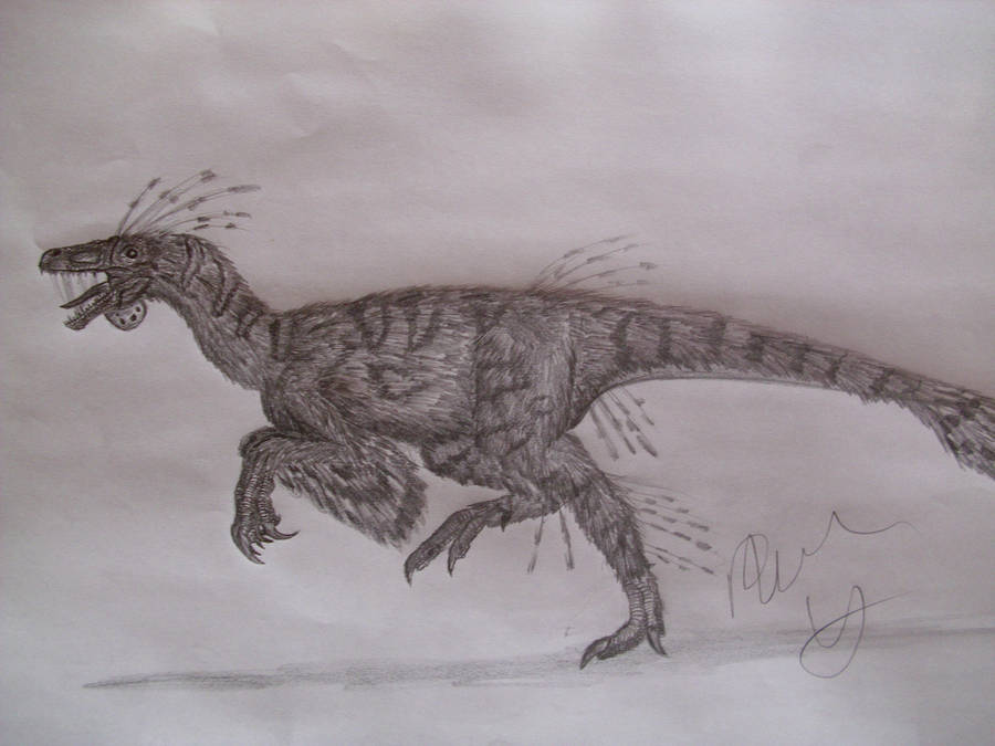 Elopteryx by Teratophoneus