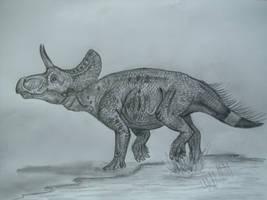 Turanoceratops tardabilis by Teratophoneus