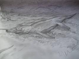 Predator X by Teratophoneus