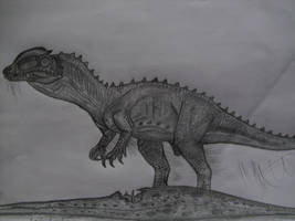 Lophostropheus airelensis by Teratophoneus