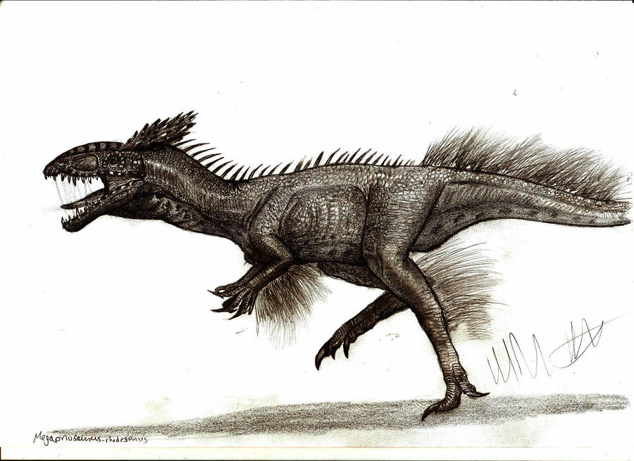 Megapnosaurus rhodesiensis by Teratophoneus