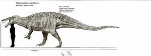 Siamosaurus suteethorni by Teratophoneus