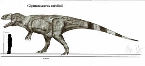 Giganotosaurus carolinii by Teratophoneus