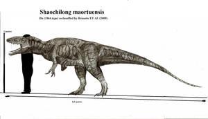 Shaochilong maortuensis by Teratophoneus