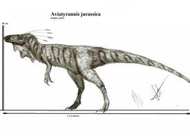 Aviatyrannis jurassica by Teratophoneus