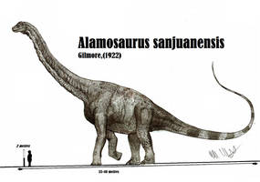 Alamosaurus sanjuanensis by Teratophoneus