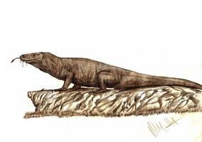 Megalania prisca by Teratophoneus