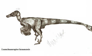 Luanchuanraptor henanensis by Teratophoneus