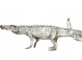 Gorgosuchus by Teratophoneus