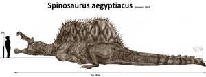 Spinosaurus aegyptiacus by Teratophoneus