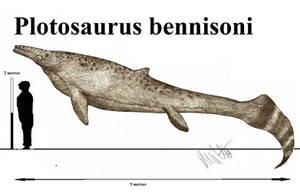 Plotosaurus bennisoni by Teratophoneus