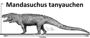 Mandasuchus tanyauchen by Teratophoneus