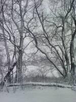 Winter6 by Sannalee01