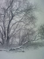 Winter8 by Sannalee01