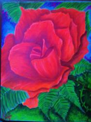 burning rose by nabellamalinka