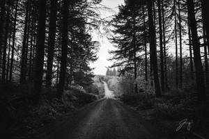 The Light I Can't Follow by Jorgipie