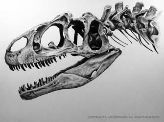 Allosaurus Fragilis by ThirdTree