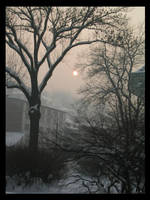 COLD sun by f3arless