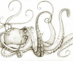 Octopus by octootco