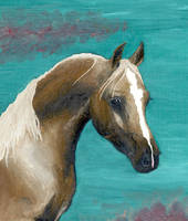 Arabian horse by g33kgirl1980