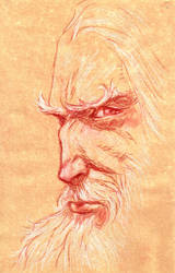 Gandalf Portrait by bozac