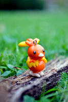 Torchic by TheCooocy