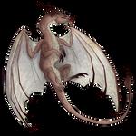 pseudodragon token by blackstonethekitty56