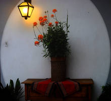 Flower Pot by clausch99