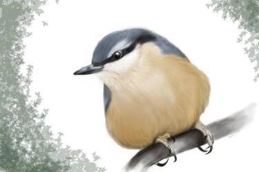 Little Bird by KazenoMiho