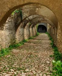 Path to choice by andraangel5