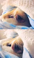 Sleepy Boy by ThePiggieWheek