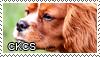 CKCS stamp by Tollerka